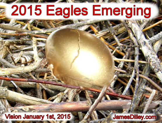 2015 The Year of Eagles Emerging